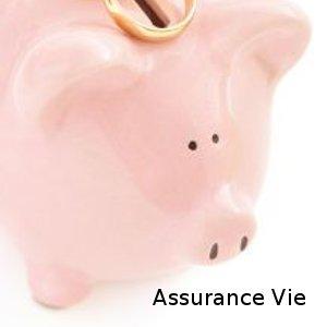 assurance vie un bon placement financier conseils et avis. Black Bedroom Furniture Sets. Home Design Ideas